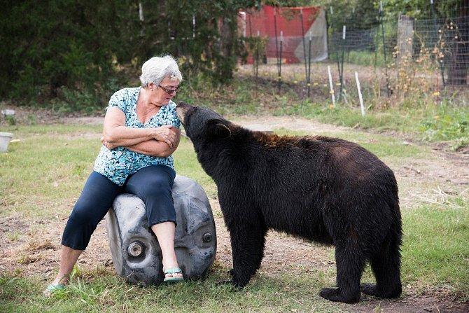 Mít doma medvěda?