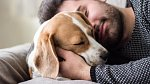 10 nejmoudřejších citátů o lásce od slavných osobností