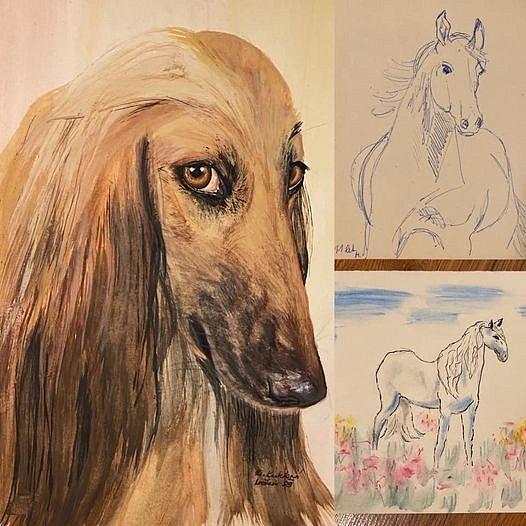 Nejraději maluje zvířata