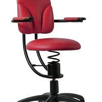 Zdravotní židle SpinaliS