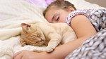 Kočky mají na vývoj a rozvoj dětí velmi pozitivní vliv.