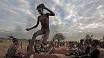 Tento mladý hoch musí přeběhnout přes záda čtyř volů (ano, podmínkou je, aby byli býci kastrováni), pak se stane mužem.