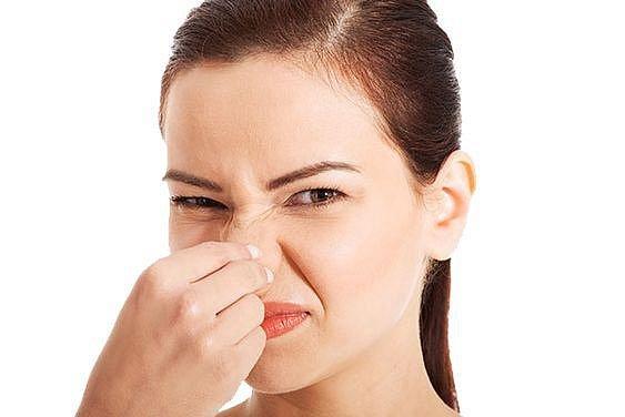 Nos dokáže rozeznat celkem 50 tisíc různých pachů.