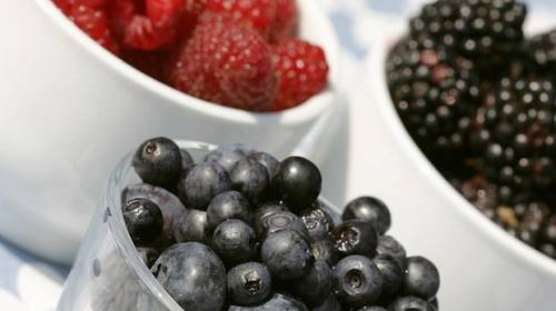 TOP recepty na sobotu: Moučníky z lesního ovoce