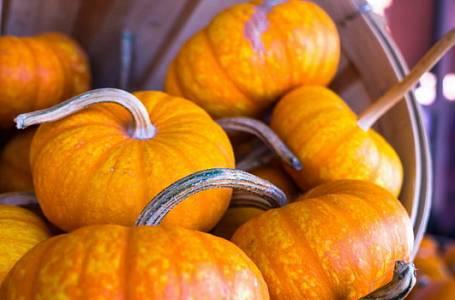 Dýně: Podzimní zdroj zdraví