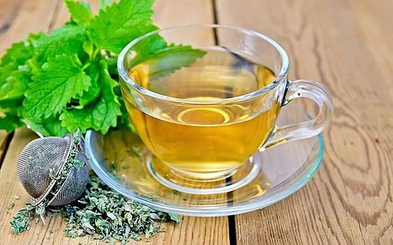 Meduňkový čaj se může být bez kontraindikací až třikrát denně.