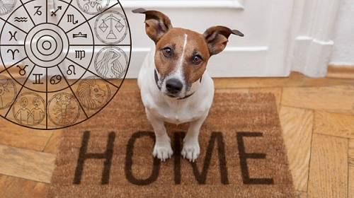 Poznejte svého psa podle znamení zvěrokruhu