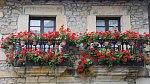 Balkóny osázené oblíbenými pelargoniemi