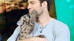 Evan Antin miluje všechna zvířata. Mezi jeho neoblíbenější patří krokodýli a kobry.