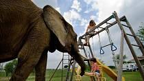 Sloníka jako kámoše na hraní mají dvě holčičky.