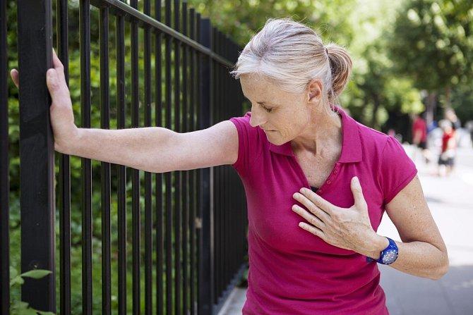 Kočka dokáže snížit riziko infarktu až o jednu třetinu.