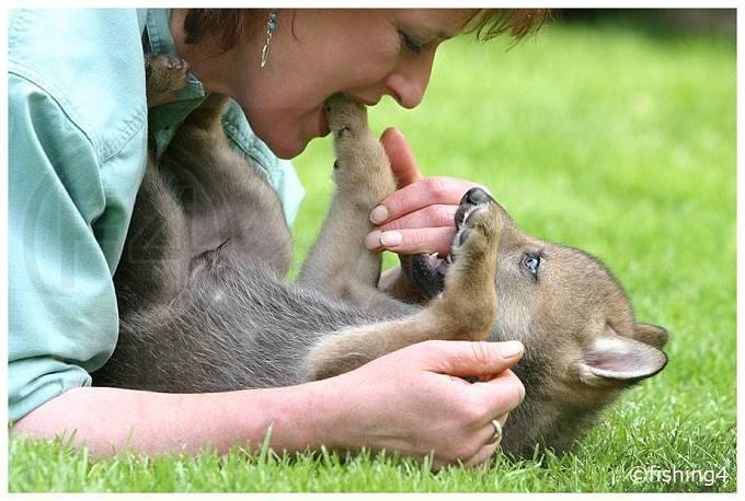 Tanja vyrůstala mezi zvířaty.