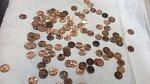 V břiše tohoto třináctiletého Jack Russell teriéra veterinář objevil celou hromadu drobných mincí.