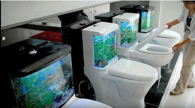 """Japonsko, Tokio, """"rybičkové záchody"""" - obchod z potřebami pro akvaristy"""