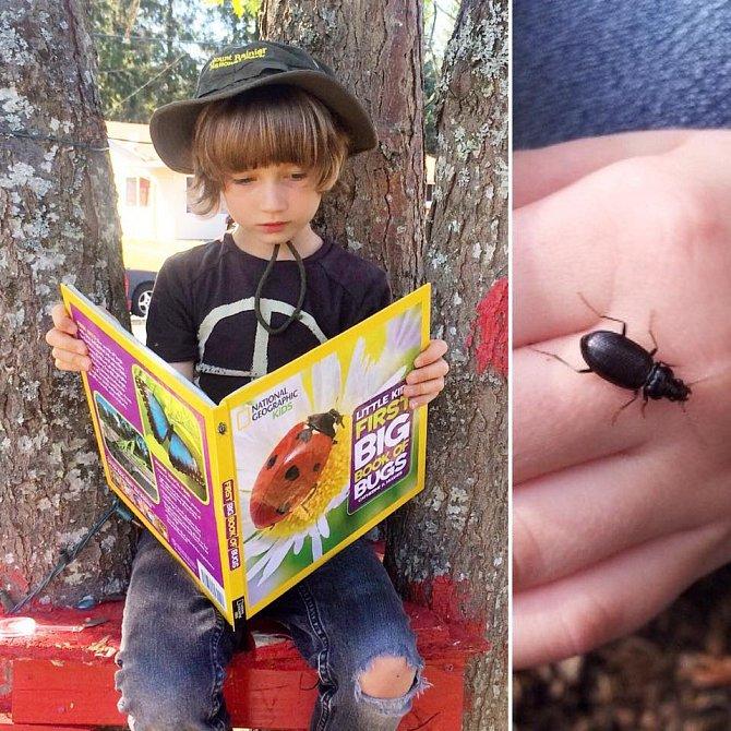 Henry se zajímá o přírodu a zná každého brouka, který se v jeho okolí může mihnout.