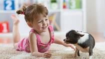 Pro dítě je zvíře nejen kamarád, ale i zajímavá terapeutická pomůcka. Učí se starosti, empatii, navazuje vztah.