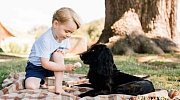 Prince George a pes Lupo