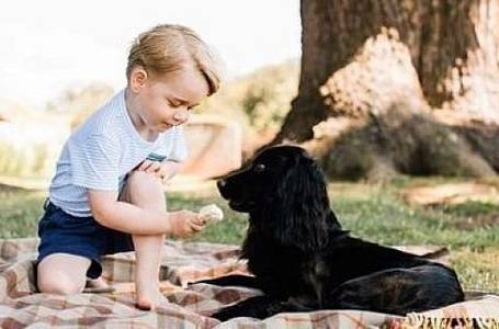 Prince George a pes Lupo