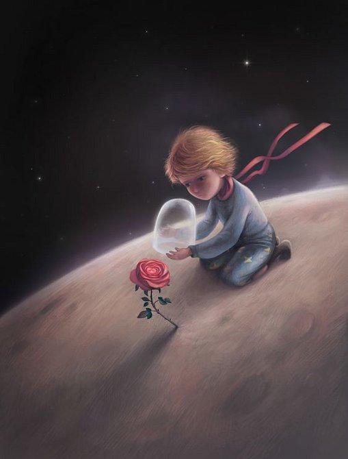 """A pro ten čas, který jsi své růži věnoval, je ta tvá růže tak důležitá. """"Lidé zapomněli na tuto pravdu,"""" řekla liška. """"Ale ty na ni nesmíš zapomenout. Stáváš se navždy zodpovědným za to, cos k sobě připoutal."""