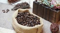 Zrnková káva nemá v lednici co dělat!