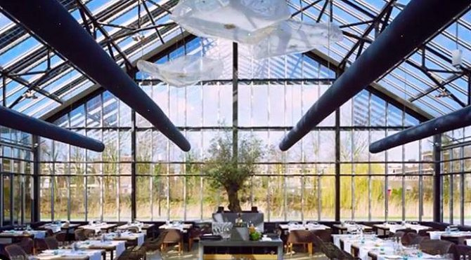 Tato holandská restaurace vznikla ve skleníku. A asi vás nepřekvapí, že se zde servíruje výhradně vegetariánské menu.