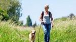 Pobyt venku, procházky a pohyb by se během klimakteria neměly zanedbávat.