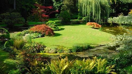 Tradiční  fotosoutež Zahrada roku je zpátky