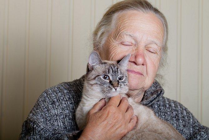 Blízkost koček snižuje projevy stařecké demence.