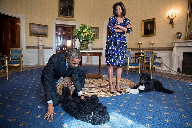 Barack si hraje s rodinnými psy Sunnym a Bo