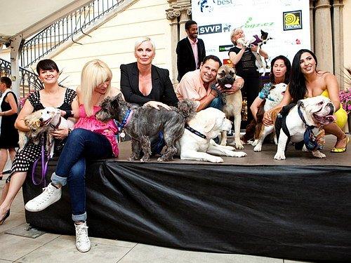 Psi a celebrity