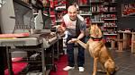 Martin Zounar miluje psy.