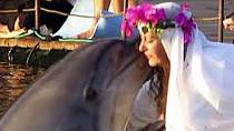 Sharon svého delfína prý opravdu miluje!