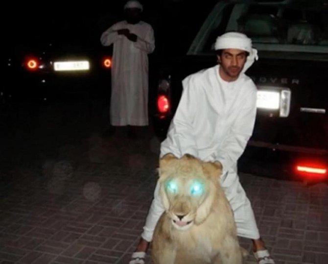 Každý bohatý šejk vlastní minimálně jednoho tygra či lva