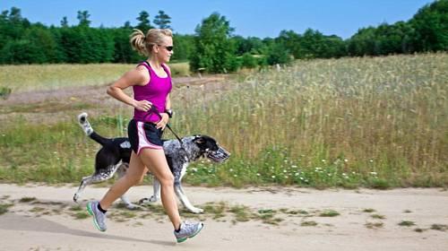 Váš psí miláček. Kterého psa můžete vytáhnout běhat nebo na kolo?