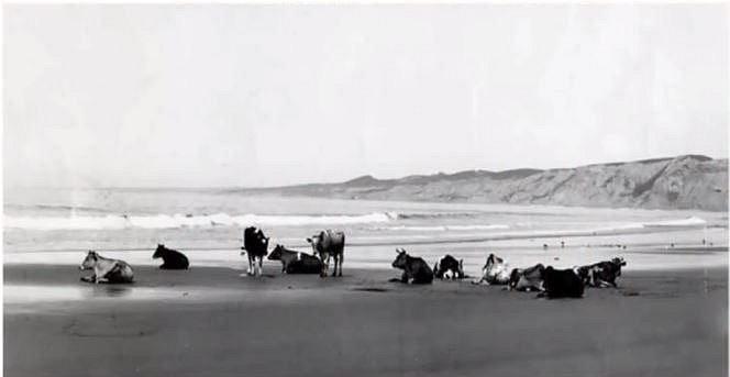 Kalifornie - Takto vypadalo pobřeží této sluncem zalité země ještě v roce 1920.