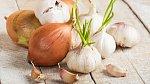 Cibule a česnek - základ české kuchyně