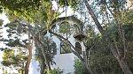 Dům je vcelku nenápadný a šikovně ukrytý mezi stromy.
