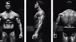 Posilování a s ním spojený kult vysportovaných těl proslavil Arnold Schwarzenegger, nebo alespoň byl u toho, když bodybuilding začal získávat obrovskou popularitu. Jeho snímky Barbar Conan a Terminátor byly postaveny na jeho svalnaté post...