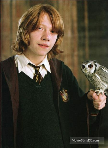 Harry Potter a Ohnivý pohár - Rupert Grint coby Ron Weasley