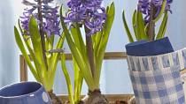Mrkněte na inspiraci – Jak ubytovat Velikonoce