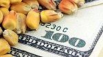 Kukuřice je stejně cennou komoditou při obchodování na burze jako ropa nebo měď.
