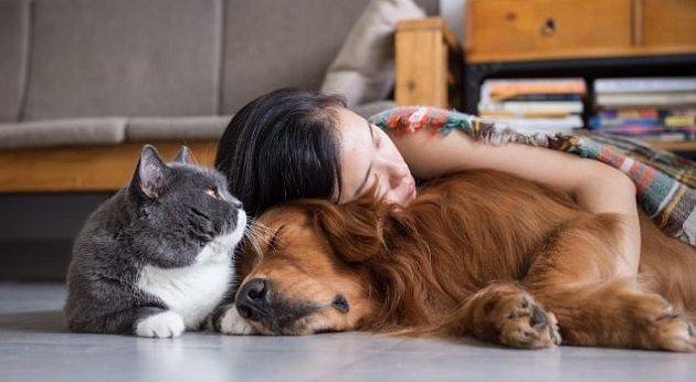 Zvířecí mazlíčci místo antidepresiv.