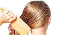 Vlasy pravidelně čeště, ideálně před i po mytí.