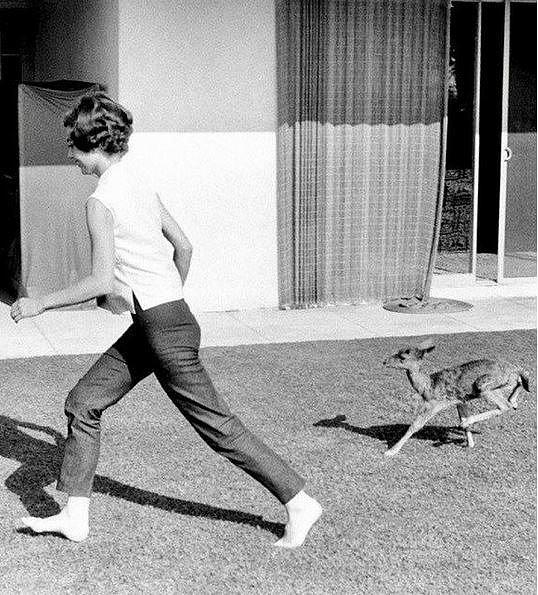 Audrey Hepburn se svým poněkud unikátním zvířecím mazlíkem, 1958