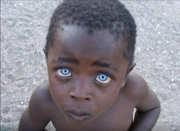 V některých částech Afriky jsou modré oři považovány za známku čarodejnictví