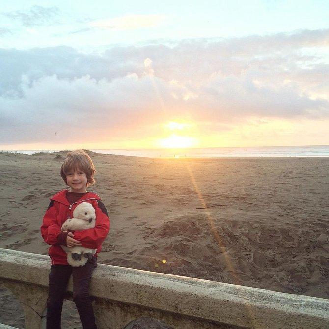 Henry spolu s přáteli a jejich rodiči vysbíral odpadky z pláže.