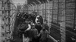 Být dítětem v koncentračním táboře, bylo hrozné. Valná většina dětí tábor nepřežila.