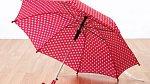 Dáma nikdy nenechává deštník uschnout rozložený v místnosti. Před vstupem do budovy ho oklepe a nechá uschnout zavěšený, případně ve stojanu na deštníky.
