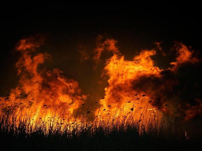 Pyrofilie: Vzrušení vyvolává pohled na oheň.