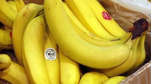 10 faktů o banánech, které jste rozhodně nevěděli